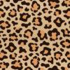 design leopard